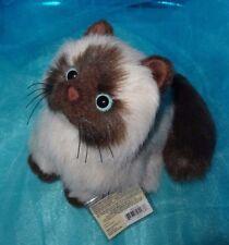 Cute Webkinz Himalayan Cat Ooak New Ganz Kitten Stuffed Animal Code Tag Hm165