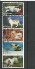 Buratia hübscher Zusammendruck aus 5 Marken Katzen