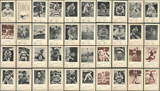 1946-49 W603 Sports Exchange Lot of 39 different baseball cards and header card