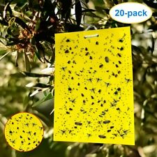 Yellow Traps Control Fungus Gnats, Whiteflies, Aphids, Leafminers, Thrips (40)