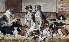 "John Emms, Hounds at Rest, HUNTING DOGS, Antique Home Decor, 17""x10"" ART PRINT"