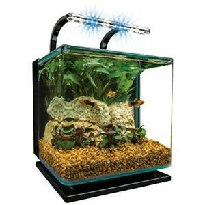 Marineland Contour 3 aquarium Kit 3 Gallons, Rounded Glass Corners, Includes LED