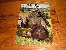 Schwarzwald Black Forest Foret Noire Vintage Germany German Blumen und Postcard