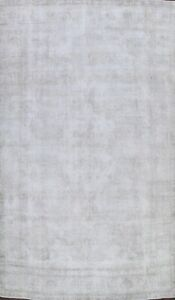 Antique Muted Evenly Low Pile Tebriz Distressed Area Rug Hand-knotted WOOL 8x11