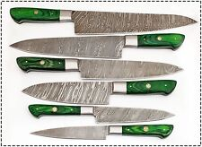 Eye Catching Custom Made Damascus Steel Professional Kitchen Knife set-DB-071-GR