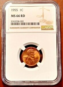 1955 Lincoln Cent  NGC MS66RD  Philadelphia Mint   Gem BU   Full Red