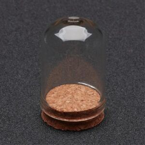 2 Glass 36.5x22mm Vial Domed Display Bottles with Cork. (A1A)
