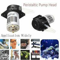DC 6V/12V/24V Dosing Pump Peristaltic Pump Dosing Head Aquarium Lab Analytical--