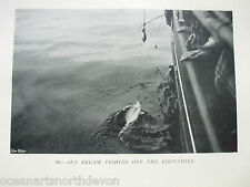 ANTIQUE PRINT C1904 FISHING VINTAGE SEA BREAM FISHING OF THE EDDYSTONE PICTURE