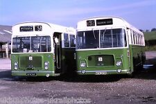 Crosville UFM56F & NFM289M Congleton 18/10/81 Bus Photo