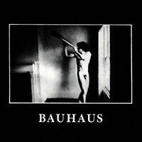 Bauhaus - In The Flat Field [CD]