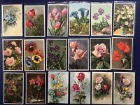 18 Vintage Greetings Flower Postcard Set. Belgium. Mint. Collector Items. Nice