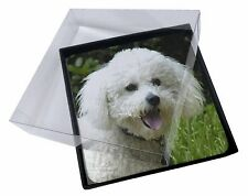 4x Bichon Frise Dog Picture Table Coasters Set in Gift Box, AD-BF2C