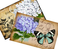 Shabby Chic Vintage Butterfly & Hydrangea - Set of TWO 5x7 Cotton Fabric Blocks