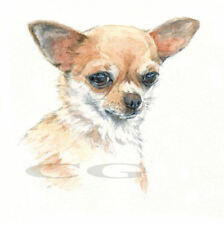 CHIHUAHUA no6.     3 Blank Dog greeting cards by Christine Groves