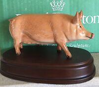 ROYAL DOULTON PIG TAMWORTH BROWN GLOSS  MODEL No DA 215 ON PLINTH PERFECT BOXED