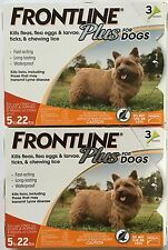 FRONTLINE Plus for Dogs Flea and Tick Medicine Small Orange Box 6 Month Supply