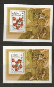 Two 1984 MNH Antigua Local Flowers Souvenir Sheets (Sc # 759) - A1e