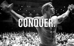 CONQUER - Arnold Schwarzenegger Bodybuilding Motivational Quotes Silk Poster