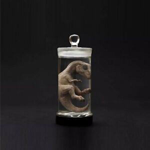 Dinosaur Pet In Bottle Tank Figure Toy Embryo Pet Carnivorous Model T Rex Raptor