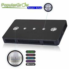 PopularGrow Dimmable 169W LED Aquarium Light Royal Blue Ratio Fish Reef Coral
