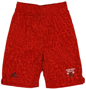 Adidas NBA Basketball Youth Boys Chicago Bulls Crazy Light Swingman Shorts, Red