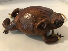 Rare Vintage Amphibian Frog Skin Zippered Coin Purse Taxidermy