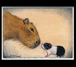 ACEO Capybara and Guinea Pig art print from original painting by Suzanne Le Good
