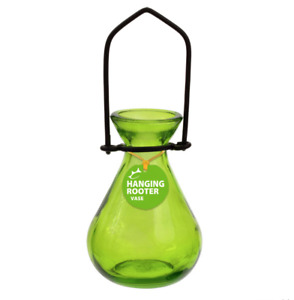 Couronne - Hanging Teardrop Rooter Vase - Lime