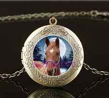 Vintage White Horse Photo Cabochon Glass Brass Locket Pendant Necklace