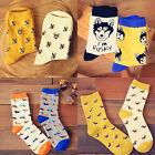 2 pairs women men colorful dog cotton socks Spring couple lover Casual socks JR