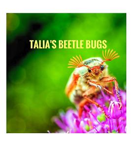 TALIAS BEETLE BUGS 9,000 Dermestid Beetles Colony, Taxidermy, Skull,