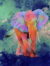 Trippy Elephant  Art Print Poster 12 x 16  HP4258