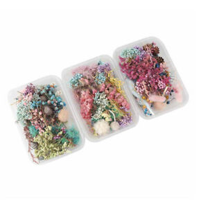3 Box Handmade Dried Flowers Candle Epoxy Mix Pendant Making DIY Craft Material