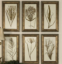 Set 6 Wheat Grass Wall Prints Gold Wood Frame Home Decor Art Botanical New