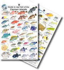FISH Sea Life ID Card MARINE LIFE - Cayman Islands and Caribbean Sea