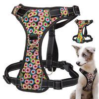 Reflektierend Brustgeschirr Hundegeschirr &Griff Gepolstert Softgeschirr XS-XL