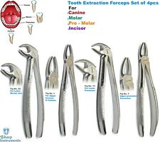 4Pcs Dental Tooth Forceps Upper-Lower Molars Canines Extracting Surgical Forceps