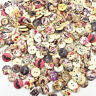 Mix 50pcs Wood Buttons 20mm Sewing Craft Mix Lots Wholesales WB661