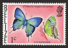 Belize 346,MNH.Michel 331. Butterflies of Belize 1974.Thecla regalis - Cramer.
