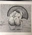 """Wild Turkey Art Pointillism RIC 83 16.25""""x15"""""""