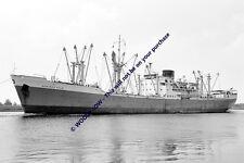 mc1541 - Palm Line Cargo Ship - Bamenda Palm , built 1956 - photo 6x4