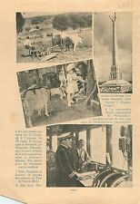 Monument Morts de Bidestroff Nécropole nationale de Vergaville 1936 ILLUSTRATION