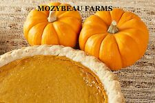 20-25 SUGAR PIE PUMPKIN SEEDS. Premium USA Seeds. Heirloom. Non-GMO.