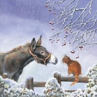 Over the fence Donkey and Ginger Kitten Cat 10 pack small square Christmas cards