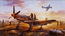 TRUDGIAN Last Man Home P-51 Mustang SOLD OUT 357th FG w/Robert Taylor bonus