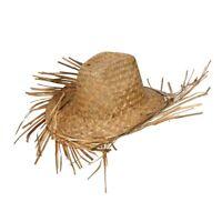 617c32a98107 Adult HAWAIIAN Summer Party Guy Palm Tree Fancy Dress Costume Mens Straw Hat
