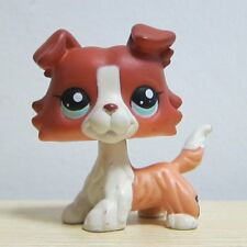 Littlest Pet Shop Brown Collie Dog Puppy Blue Eyes Figure LPS Rare Toy #1542