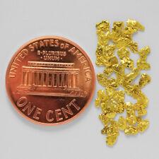 0.7753 Gram Alaska Natural Gold Nuggets --- (#64639-14) - Alaskan Gold Nuggets