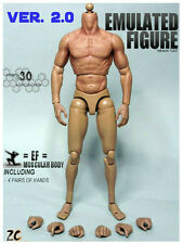 ZC Toys 1/6 Scale Muscular Nude Figure Body 2.0 TTM19 Fit Wolverine Head USA